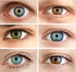 choisir ses lunettes selon la couleur des yeux