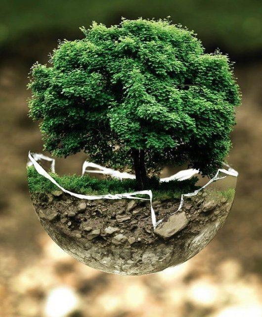 gestes ecologiques